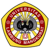 Universitas Lambung Mangkurat's Official Logo/Seal