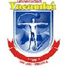 Ayatolah Borujerdei University's Official Logo/Seal