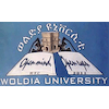 Woldia University's Official Logo/Seal