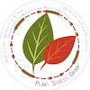Agricultural University of Athens's Official Logo/Seal