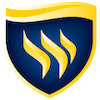 Texas Wesleyan University Logo or Seal