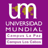 Universidad Mundial Logo or Seal