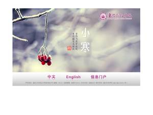 Chongqing University of Science and Technology's Website Screenshot