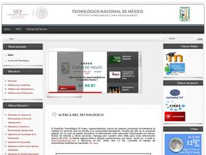 Technological Institute of the Llano de Aguascalientes Screenshot
