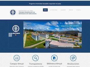 Universidad Nacional Toribio Rodríguez de Mendoza's Website Screenshot