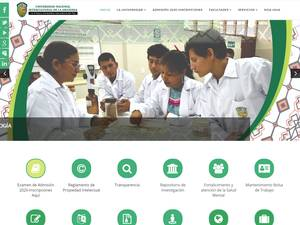 Universidad Nacional Intercultural de la Amazonía's Website Screenshot
