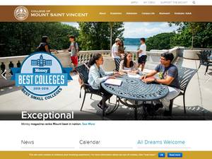 College of Mount Saint Vincent's Website Screenshot