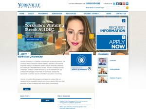 Yorkville University Ranking Review