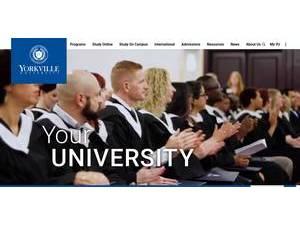 Yorkville University Ranking Review