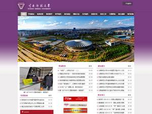 Yunnan Normal University's Website Screenshot